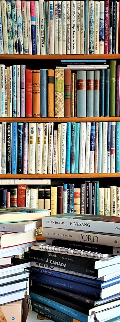 Nordnorsk litteratur. Foto: Hilde Kat. Eriksen