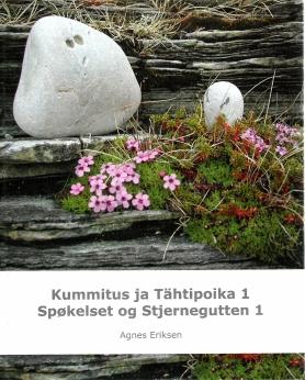 BOK_Eriksen_Stjernegutt1