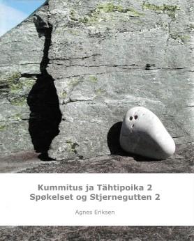 BOK_Eriksen_Stjernegutt2